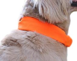 Dog Not Gone Visibility Products Collar Cover, Hunter Orange