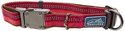 Coastal Pet Products DCP36923BRY K9 Explorer 1-Inch Dog Coll