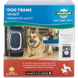 PetSafe Deluxe Big Dog Trainer, PDBDT-305