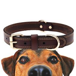 TREVANO Genuine Leather Dog Collar with Alloy Buckle and Dou