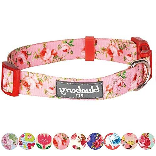 Blueberry Pet 8 Spring Scent Floral Rose Baby Collar, Small, Adjustable