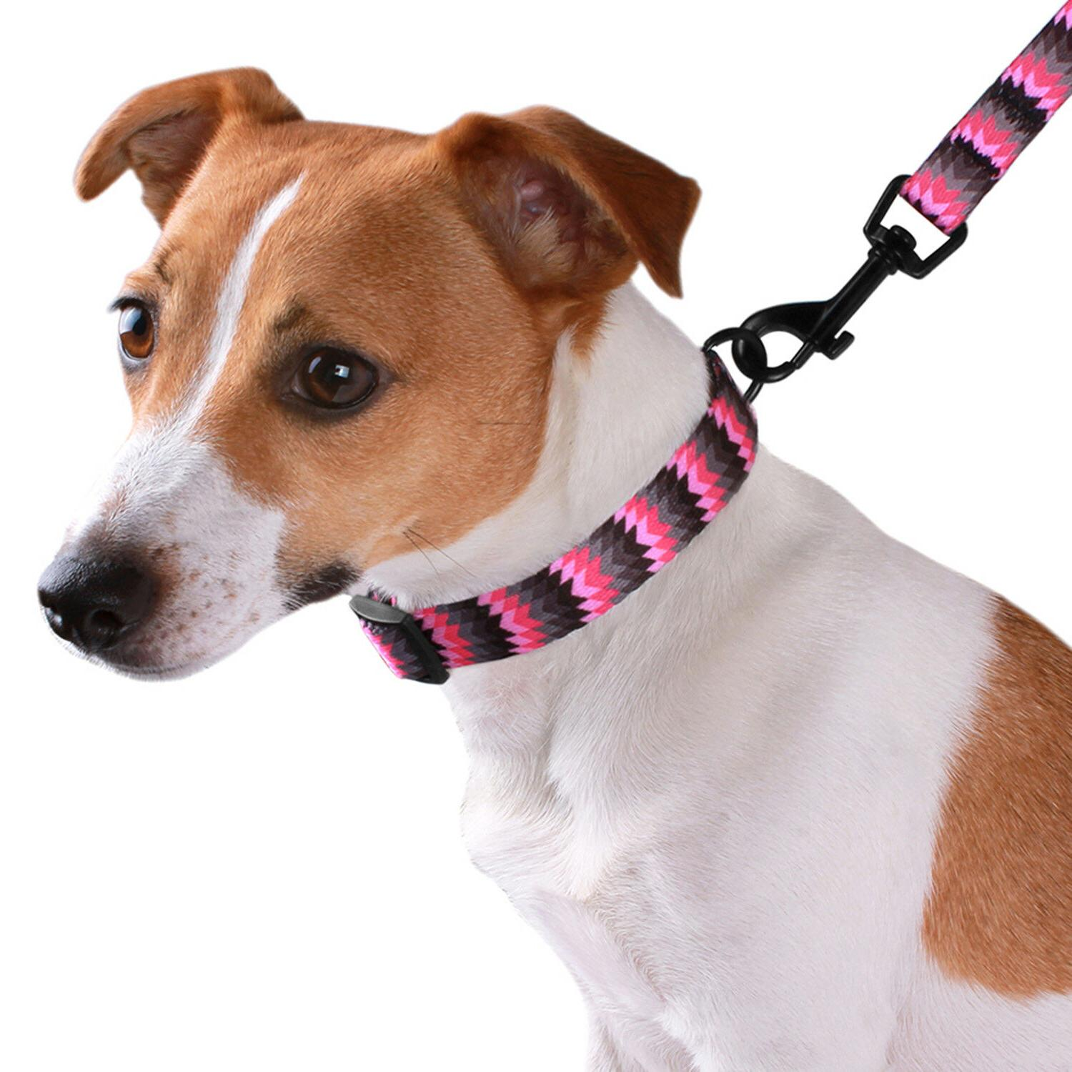 Adjustable Collar with Buckle Dogs S M L
