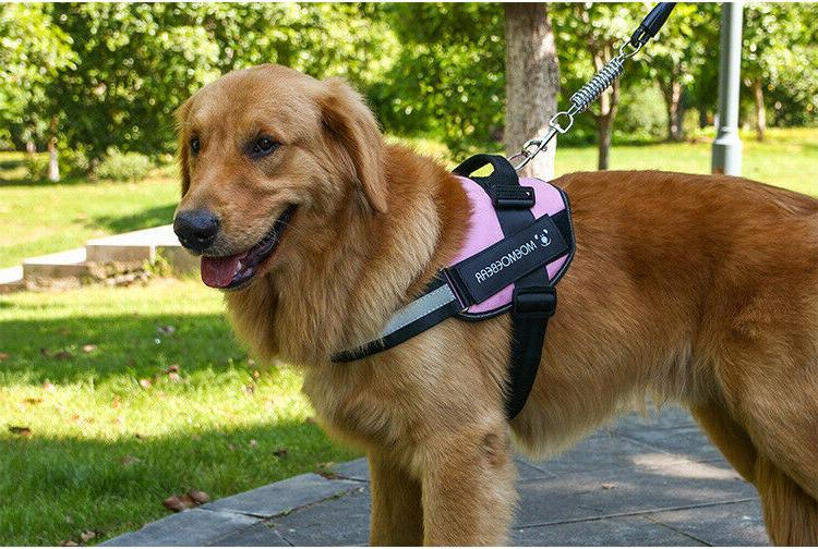 Harness No Pull Tactical Heavy Vest Dog Collar
