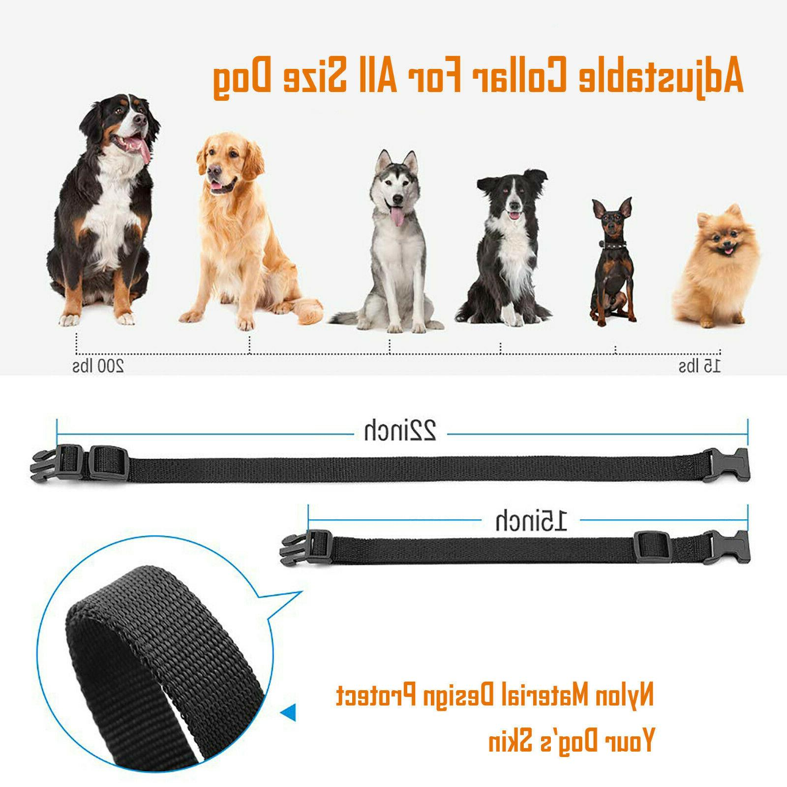Dog Shock Training Rechargeable LCD Waterproof