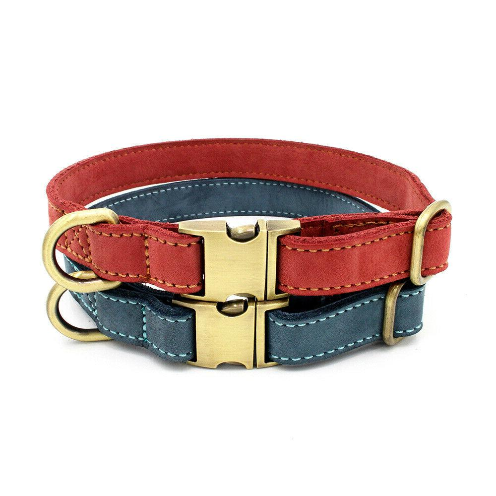 Genuine Personalized Collar Engraved L