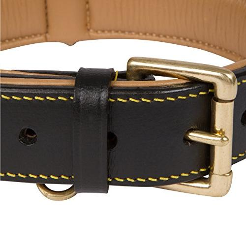 Soft Leather Padded for Comfort with Genuine Leather, Best for or Female Dogs,