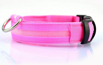 SAFETY LED Dog Light Up Collar Glow Bright Color Leash XS