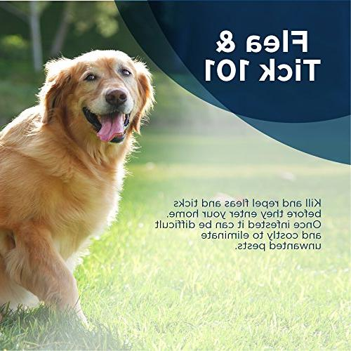 Bayer Flea and Tick Collar for Large Dogs, 8