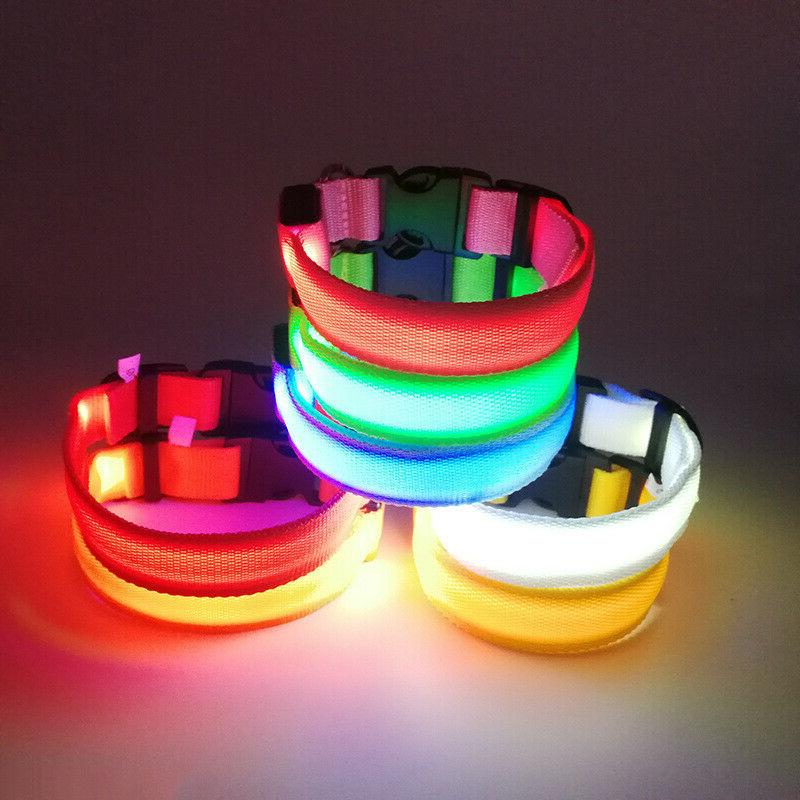 USB Rechargeable Light up Collar Night Safety