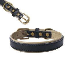 Leather Dog Collars for Small, Medium Dogs Padded Collar Set