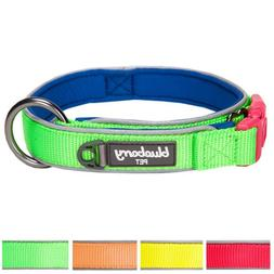 Blueberry Pet Soft & Comfy Summer Hope 3M Reflective Padded