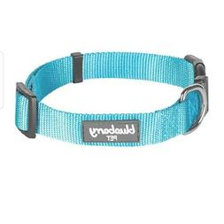 Blueberry Pet Turquoise Color Padded Dog Collar - Size Small